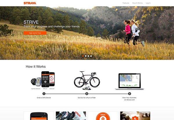 12websites-ux-ui-design