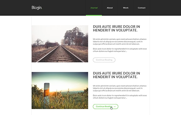 Blogin2