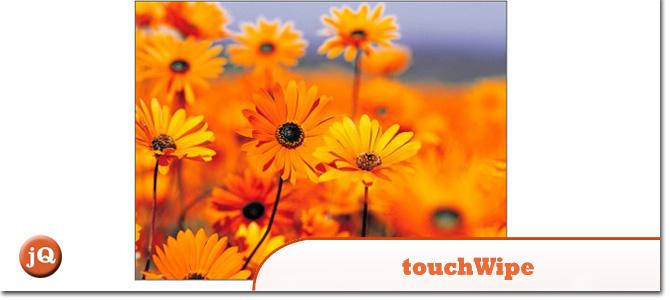 touchWipe